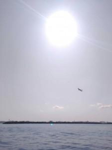 まりかの飛行機