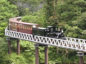 100173_7_100173_4_沖繩軽便鉄道1号機