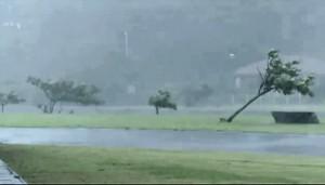 bolaven-typhoon15th-okinawa